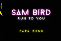 Run To You - Sam Bird, Papa Zeus